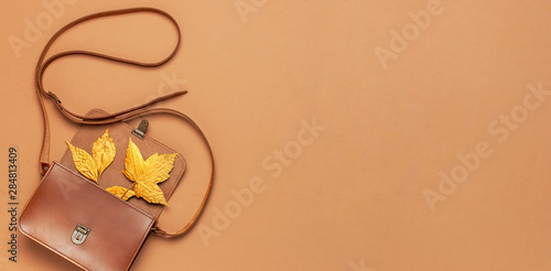 Photo  Brown leather women bag and golden autumn leaf on brown background top view flat lay copy space