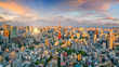Leinwanddruck Bild - Panorama view of Tokyo city skyline and Tokyo Tower building in Japan