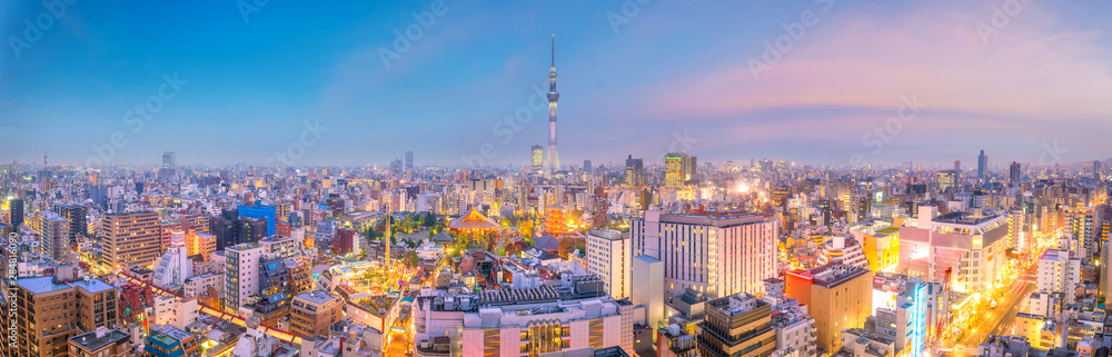 Fototapety, obrazy: View of Tokyo skyline at sunset