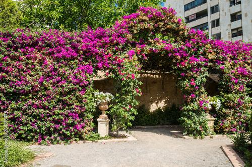 Valencia, Spain-07/20/2019:Monforte Garden - Jardines de Monforte Slika na platnu