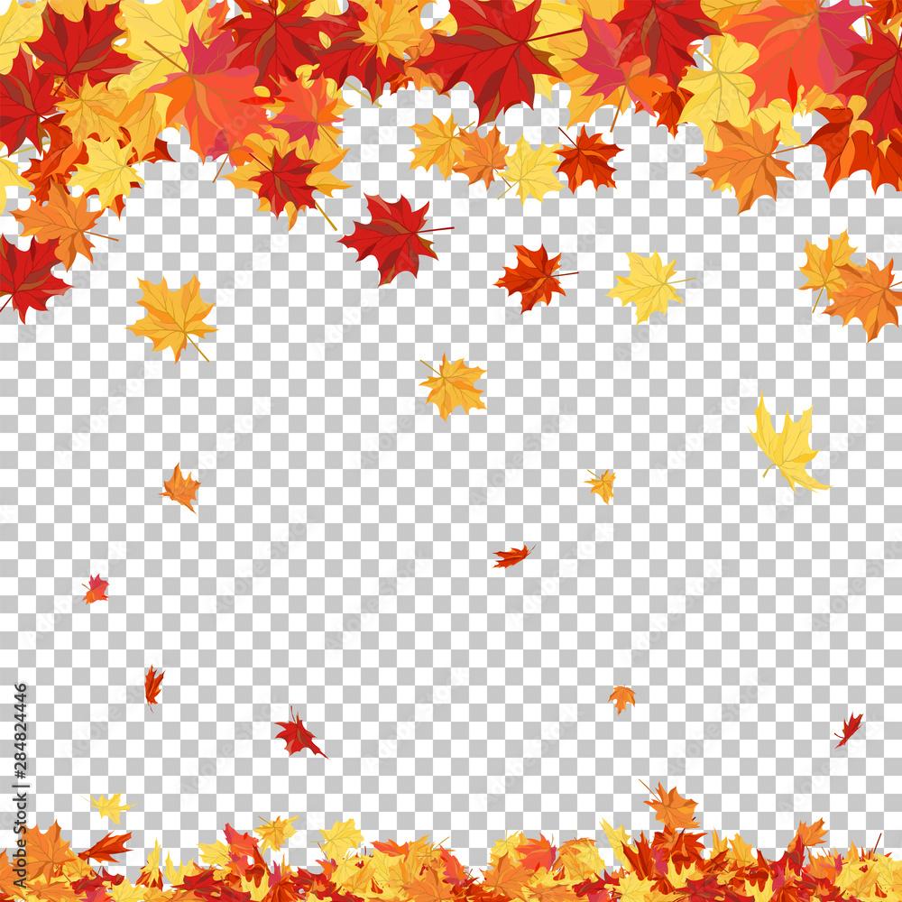 Fototapeta Autumn