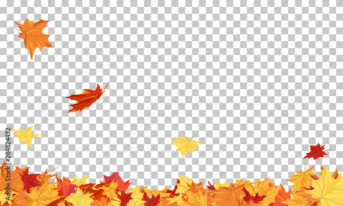 Obraz Autumn - fototapety do salonu