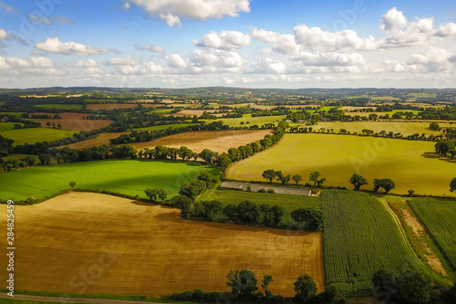 Canvas Print Fields and meadows in nature in summer
