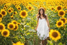 Pretty Lady With Long Hair Smiles In The Sunflowers Field