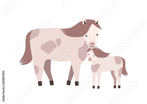 Obraz na plátně Horse and foal or colt isolated on white background
