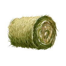 Round Hay Bale Isolated On A White Background. Watercolor Illustration. Handdrawn Clipart.