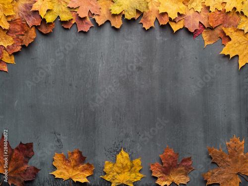 Fotografiet  Seasonal autumn background. Frame of colorful maple leaves.