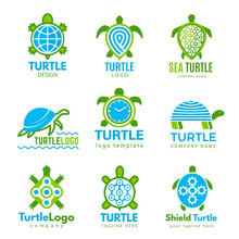 Turtle Logo. Ocean Wild Animal...