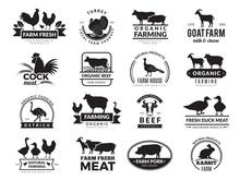 Farm Animals. Business Logo Wi...
