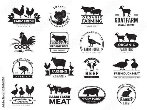 Stampa su Tela Farm animals