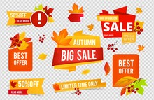 Autumn Sale Badges Collection. Fall Sales Vector Banners Labels With Red Orange Leaves Isolated On Transparent Background. Illustration Autumn Sale Badges With Leaf And Rowan