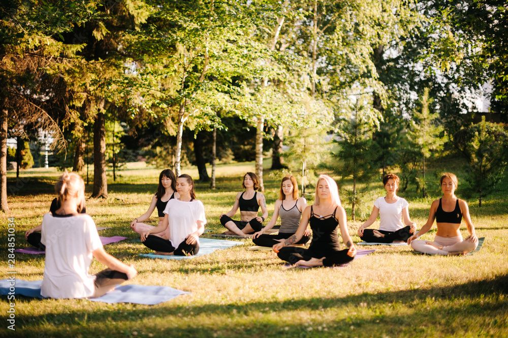 Fototapeta Group of young women are meditating in park on summer sunny morning under guidance of instructor. Group of girl outdoors are sitting in lotus pose on yoga mats on green grass with eyes closed