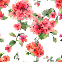 Watercolor Flower Geranium Seamess Pattern, Pelargonium Texture, Red Flowers