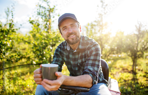 Fototapeta A mature farmer with cup of coffee outdoors in orchard, resting. obraz