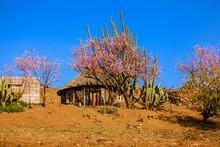 Traditional Hut In Malealea, Lesotho