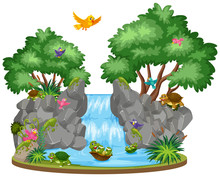 Background Scene Of Birds And Tortoises At The Waterfall
