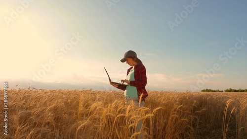 Photo Farmer girl works with a tablet in wheat field, plans a grain crop