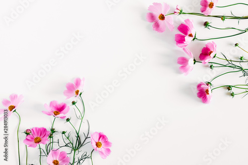 Spoed Fotobehang Bloemen Beautiful flowers composition. Pink cosmos flowers on white background. Flat lay, top view, copy space