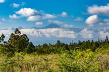 Kenyan Mighty Landscape
