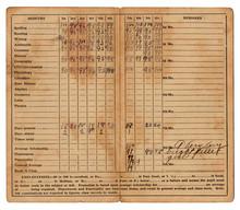 1911 Vintage Report Card Showing Academic Progress