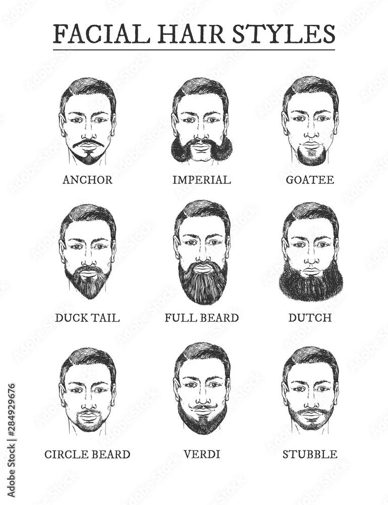 Fototapeta Facial hair styles barber guide set