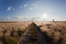 Africa, Botswana, View Of Cent...