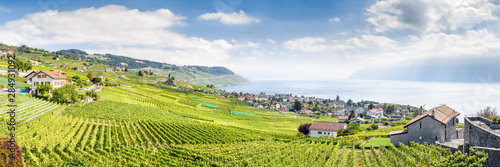 Photo The Lavaux Vineyard Terraces, stretching for about 30 km along the south-facing northern shores of Lake Geneva from the Chateau de Chillon to the eastern outskirts of Lausanne in the Vaud region