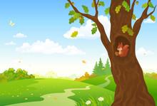 Cartoon Autumn Woods
