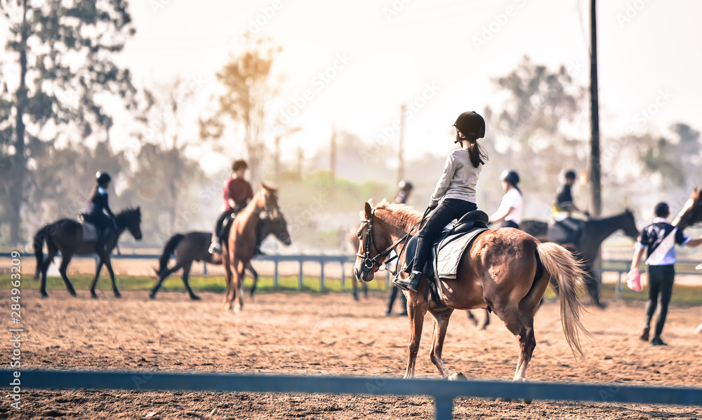Fototapety, obrazy: young girl is training to ride a horse horse is in the practice field