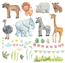 Africa Watercolor Set. Safari ...