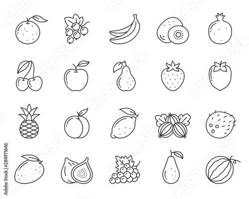 Fruit berry food orange kiwi line icon vector set Wall mural