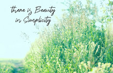 There Is Beauty In Simplicity ...
