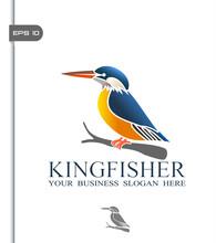 Vector Illustration Of Kingfis...