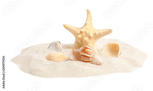 Photo Pile of beach sand with beautiful starfish and sea shells on white background
