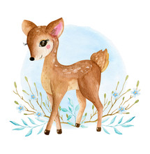Cute Baby Deer Animal For Kind...