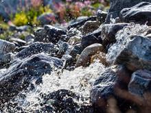 Water Flowing In An Alpine Creek