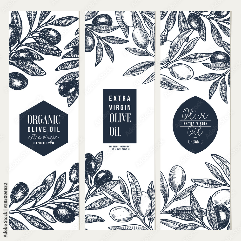 Fototapety, obrazy: Olive oil vertical design templates. Packaging label collection. Vector illustration