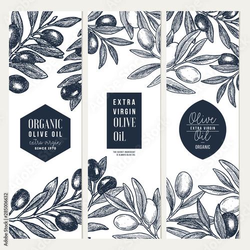 Fototapeta Olive oil vertical design templates. Packaging label collection. Vector illustration obraz