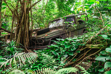 Old Military Broken Jeep In Ju...