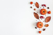 canvas print picture Autumn composition. Dried leaves, pumpkins, flowers, rowan berries on white background. Autumn, fall, halloween, thanksgiving day concept. Flat lay, top view, copy space