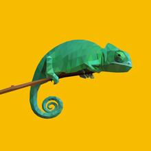 Chameleon On A Stick. Low Poly...