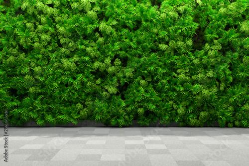 Fotografia  Vertical garden walls
