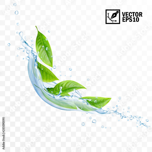 Realistic transparent isolated vector falling splash of water with leaves Fototapete