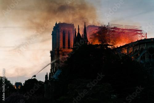 Poster de jardin Paris Incendie de la cathédrale notre dame de Paris