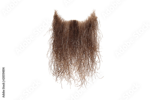 Tableau sur Toile Disheveled brown beard isolated on white. Mens fashion