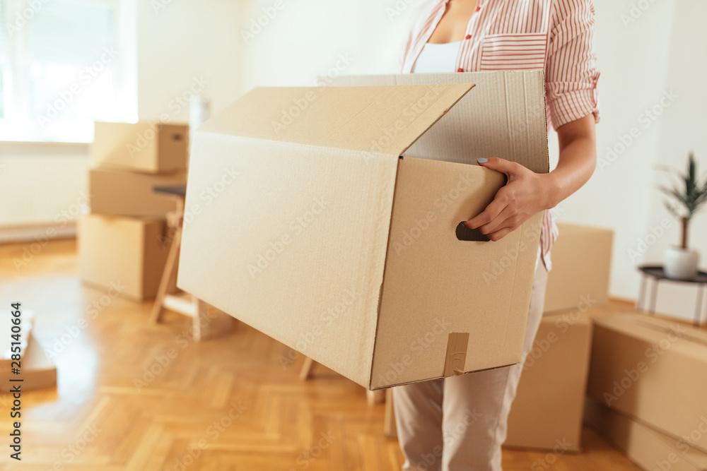 Fototapety, obrazy: Moving day