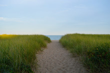 A Sand Path Lined With Lush Grasses Leading Down To A Maine Ocean Beach Bathed In A Setting Sun.