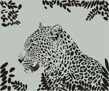 Africa, Animals, Backgrounds, Big Cat, Black, Camouflage, Carnivore, Drawing, Design, Fashion, Feline, Hunting, Leopard, Leaves, Mammal, Nature, Pattern, Power, Predator, Safari, Speed, Spots, Strengt