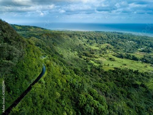Slika na platnu A drone birds eye aerial view of the cliff side, winding road, and coastline on the dangerous but beautiful Road to Hana on the island of Maui, Hawaii