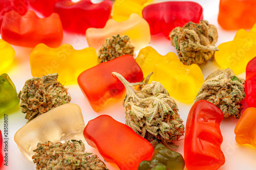 Cannabis edibles, medical marijuana, CBD infused gummies and edible pot concept theme with close up on colorful gummy bears and weed buds on white background
